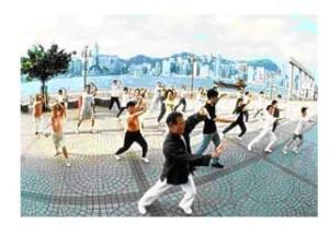 certification-martial-arts