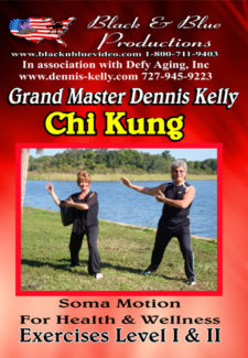 Chi Kung 1 and 2 DVD, or Video